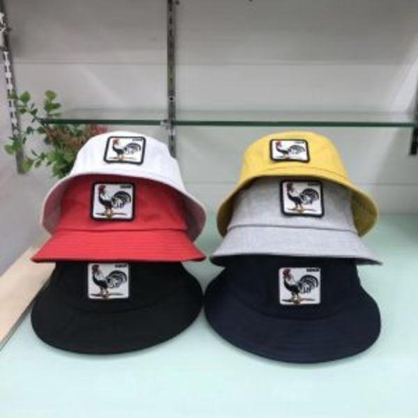 כובעים חדשים של גורין